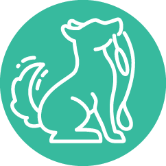 Pet care paperwork software